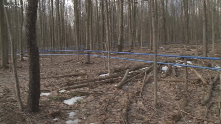 A Look Into The Making of Maple Syrup at Seldom Seen Farm.