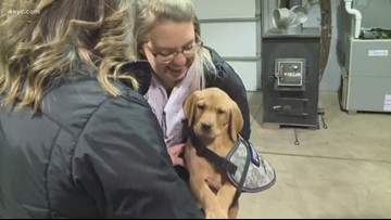 Roxy, our Wags 4 Warriors pup, to make WKYC debut today