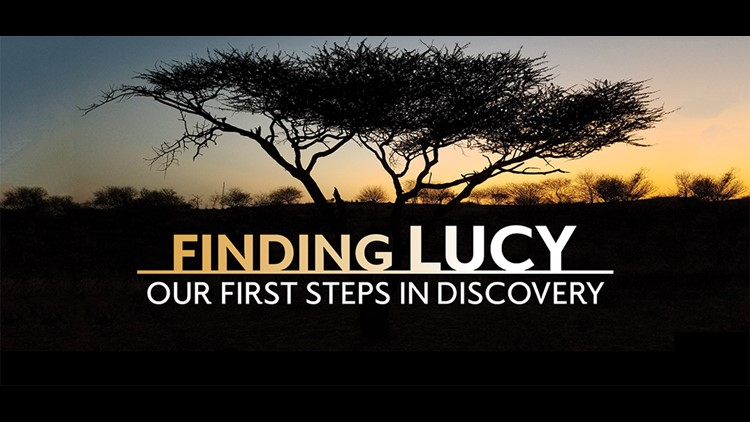 Cleveland Museum of Natural History exhibit 'Finding Lucy: Our First Steps in Discovery' to open this Saturday