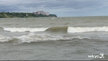Edgewater Beach, Villa Angela Beach given 'poor' water rating for potentially harmful bacteria