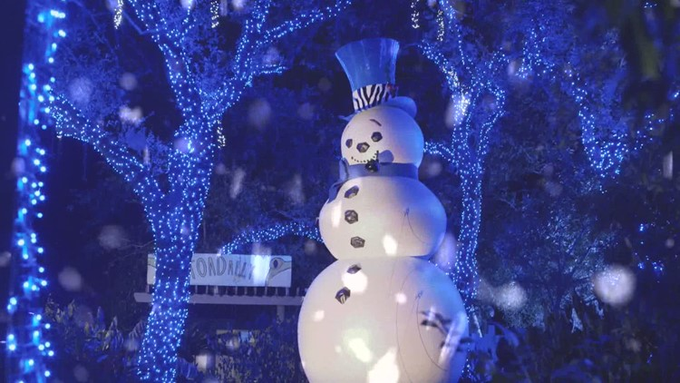 Cleveland Zoo Christmas 2020 Cleveland Zoo announces Wild Winter Lights for Christmas season
