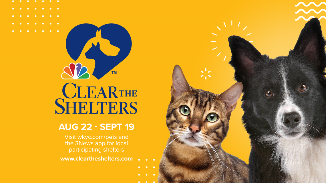 Clear The Shelters: Rescue Village