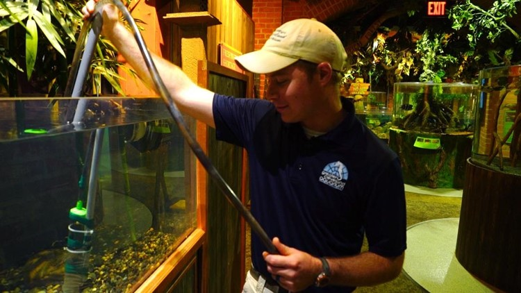 Brenton Maille, Aquarist at the Cleveland Aquarium