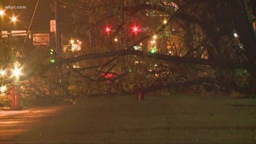 High winds causing downed trees, thousands of power outages across Northeast Ohio