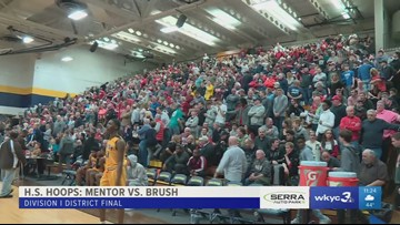 Mentor and Euclid advance to regionals