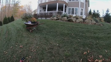What you need to know you get your yard ready for winter