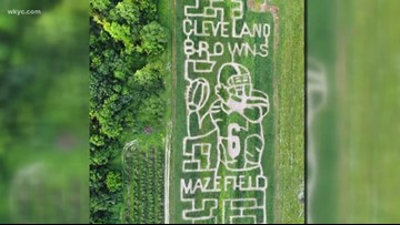 Mapleside Farms unveils new Baker Mayfield corn maze: 'The Mazefield'