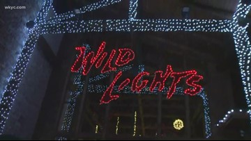 'Wild Lights' return to Akron Zoo