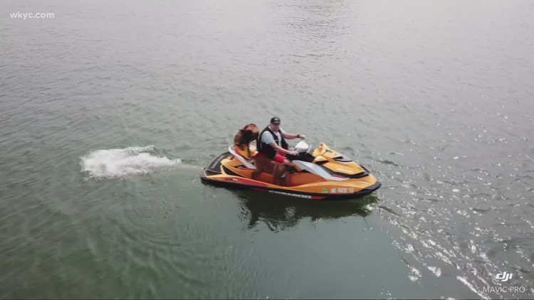 Show us something good: Parma police detective takes his dogs out on jet ski