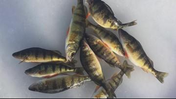Ohio ice is fleeting for anglers