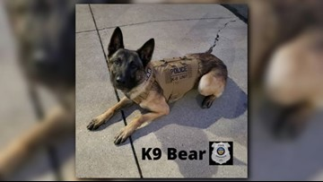 Strongsville boy's fundraising efforts continue to impact K9's across Northeast Ohio