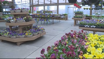 Donzell's Garden Center in Akron announces plans to close after 66 years