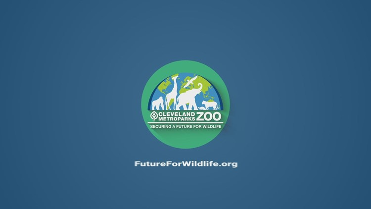Cleveland Metroparks Zoo's Trick or Treat Fest set to return October 8