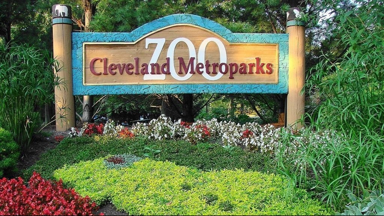 Cleveland Metroparks Zoo to host 'Walk to Remember' Sunday, June 13