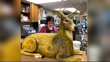 Bakery creates shockingly realistic deer cake