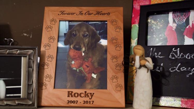 Debbie Smith's dog