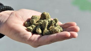 High school students in Perquimans County get sick after eating marijuana in cereal bar